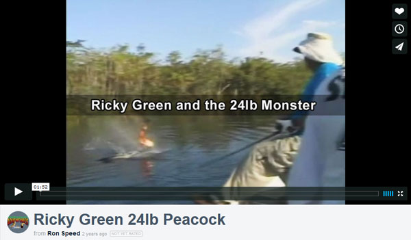 Ricky Green and the 24lb Monster!