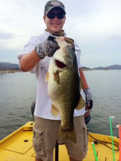 Giant Bass on Lake El Salto in Mexico
