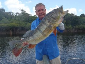 Jack Devaney landed this Amazon giant