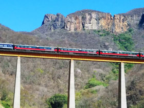 You may catch a view of the Copper Canyon train