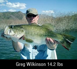 14 lb bass in Mexico