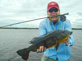 Experienced Fly Fishing Guides Brazil Peacock