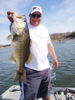Pro Angler Denny Brauer landed this 8.5 lbs Picachos beauty!