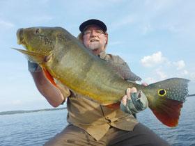 Charles Spivak peacock bass fishing in Brazil